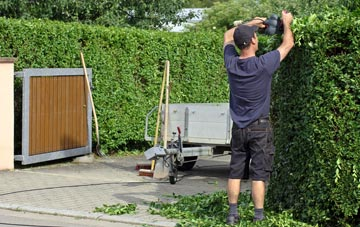 professional East Barnet hedge cutting services