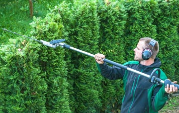 East Barnet hedge trimming costs