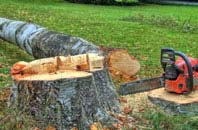 free East Barnet tree felling quotes
