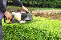 East Barnet hedge trimming services
