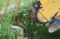 free East Barnet tree stump grinding quotes
